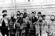Děti u ostnatého drátu bezprostředně po osvobození vyhlazovacího tábora v Osvětimi