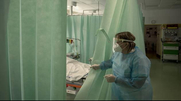Covidové oddělení nemocnice v Mladé Boleslavi