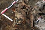 Lebka skytské válečnice, již kdysi zřejmě zdobila čelenka