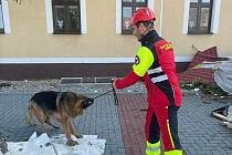 V troskách po tornádu nalézají záchranáři a hasiči živá zvířata