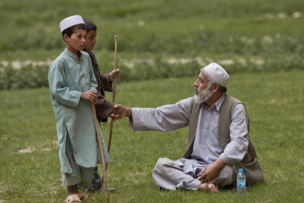 Člověk v tísni podporuje afghánské zemědělství.
