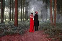 Twilight people. Andreas Scholl a Tamar Halperin hledají v lesích lidi soumraku.