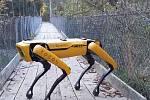 Roboty se zvládnou pohybovat v uzavřeném prostoru