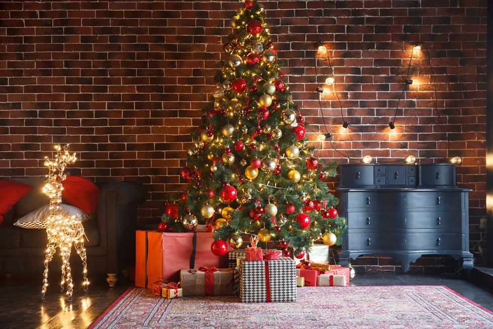 Vánoce jsou svátky radosti, pokoje a rodinné pohody v pěkně vyzdobeném domově.