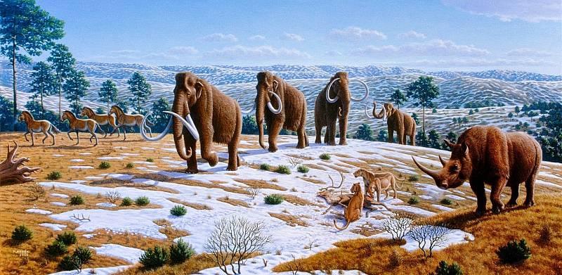 Umělecké zobrazení skupiny mamutů srstnatých ve volné přírodě. Díky současnému projektu vědců z Harvardu by se identicky vyhlížející hybrid mamuta a slona měl do přírody vrátit.