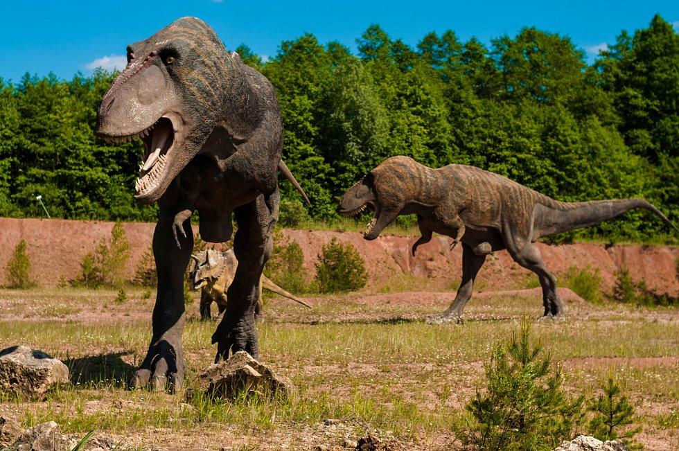 Páření bipedálních druhů dinosaurů vyžadovalo značnou míru koordinace
