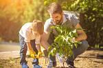 Duben je vhodný měsíc k výsadbě dřevin.