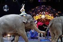 Poslední vystoupení skupiny slonů uspořádal v neděli jeden z největších amerických cirkusů, který se po 145 letech rozhodl skončit se show kritizovanou ochránci zvířat.