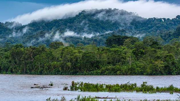 Amazonie.