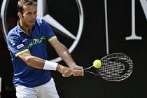 Radek Štěpánek na turnaji ve Stuttgartu.