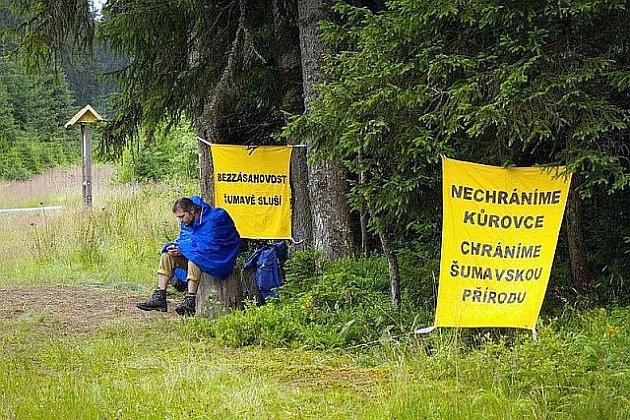V šumavské lokalitě Na Ztraceném u Modravy začali 25. července lesní dělníci i přes blokádu ekologických aktivistů kácet stromy napadené kůrovcem. Než s těžbou začali, zasahovali na místě policisté.