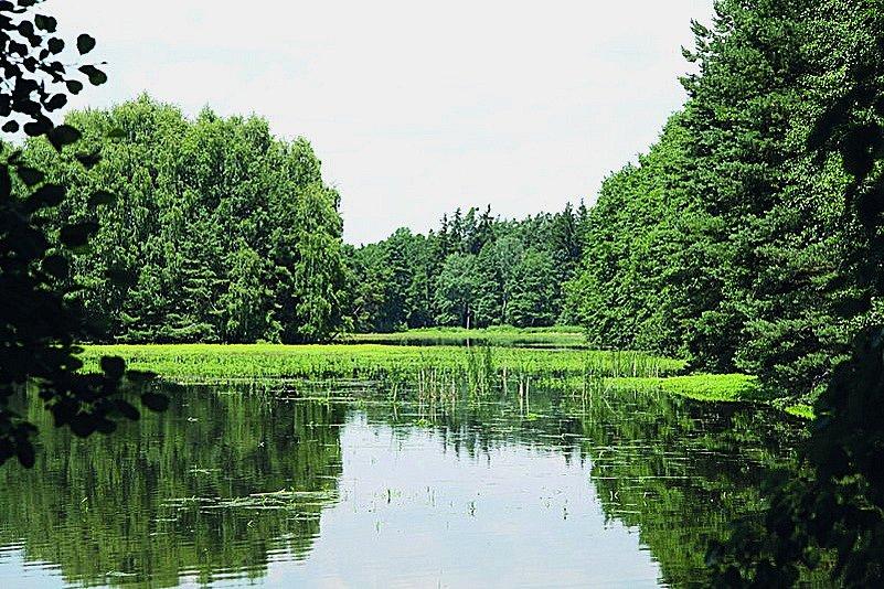 Neobyčejnou pestrostí biotopů vyniká Chráněná krajinná oblast Třeboňsko, která od roku 1977 patří do programu UNESCO.