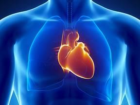 Projevy fibrilace síní si podle průzkumu téměř 40 procent lidí plete s projevy infarktu.
