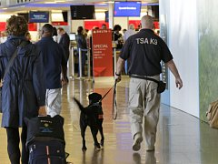 Bezpečnostní hlídka na letišti v Káhiře.