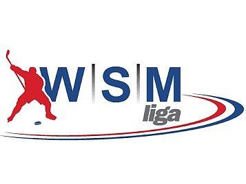 WSM liga - logo