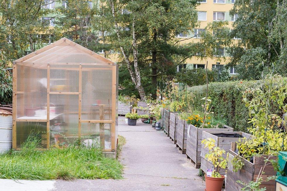 Nejvíc komunitních zahrad je stále ještě vhlavním městě – vokrajových částech Prahy, ale i přímo vcentru – Vltavy po Nusle. Ožívají zanedbané pozemky, vnitrobloky i dvorky.