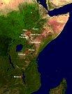 Nejmladší z australopitéků obýval východ Afriky