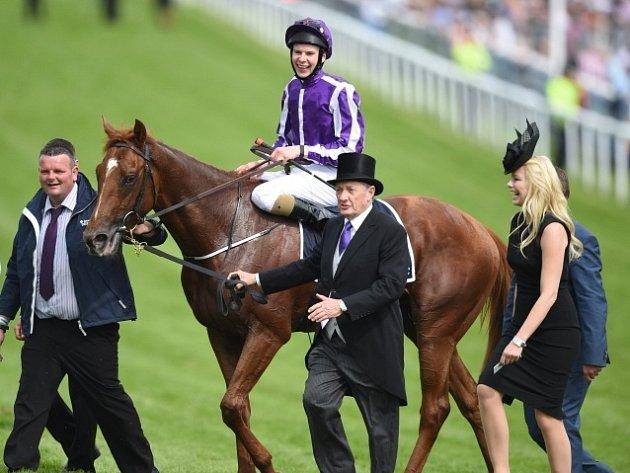 Joseph O'Brien v sedle koně Australia