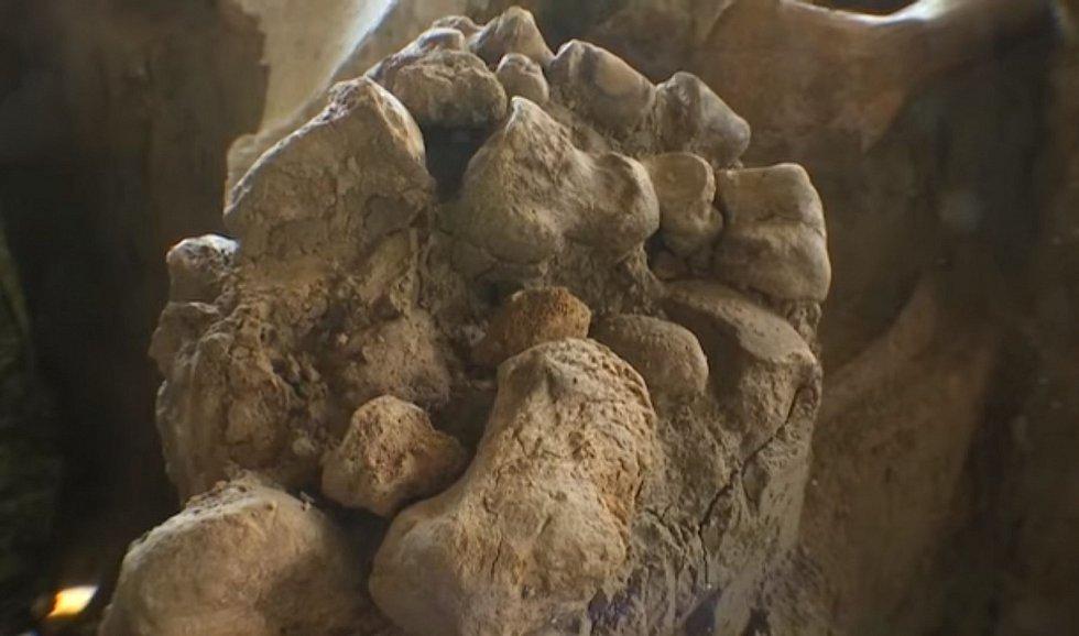Mohl by to být důkaz, že mamutí maso představovalo hlavní část stravy pravěkých lidí