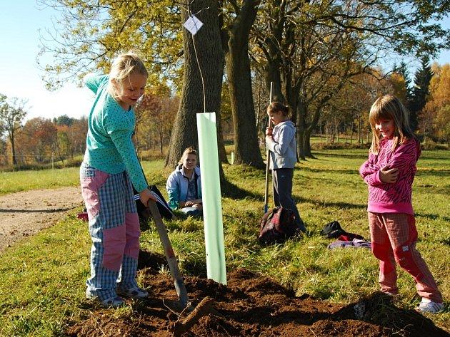 Čmelák Společnost přátel přírody nabízí obcím a školám v Libereckém kraji jedinečnou možnost zvelebit své okolí a vysadit s pomocí místních lidí přes tři a půl tisíce stromů a keřů.