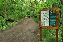 Naučné FSC Lesní stezky lákají návštěvníky nejen do městských a obecních přírodě blízkých lesů.