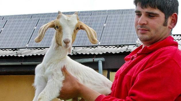 Na kozí farmě v Pěnčíně instalovali sluneční kolektory na výrobu elektřiny na většině střech farmy, majitel rozšířil výrobnu sýrů a rekonstruoval dojírnu pro kozy.