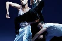 Českým divákům se v přímém přenosu z Nederlands Dans Theater (NDT) poprvé představí kanadská choreografka Crystal Pite.