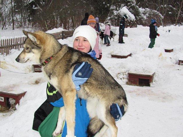 Děti z přírodovědného koužku DDM Vikýř navštívily musherku Janu Henychovou v Horním Maxově.