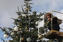 Vánoční strom. Ilustrační snímek.