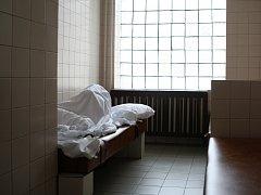 Záchytná stanice - ilustrační snímek