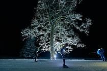 Druhý den Night Light maratonu sněžilo.