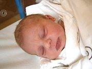 Adéla Paldusová se narodila Petře Doubkové a Renému Paldusovi z Jablonce nad Nisou 10.6.2015. Měřila 47 cm a vážila 2850 g.