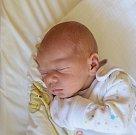 Filip Zvěřina Narodil se 13. listopadu v jablonecké porodnici mamince Pavlíně Zvěřinové z Mladé Boleslavi. Vážil 3,030 kg a měřil 50 cm.
