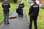 Policisté a strážníci nad zastřeleným křížencem brazilské fily