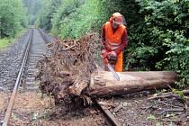 Pád stromu na kolejiště