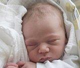 FREDERIK JANUŠKA se narodil ve čtvrtek 3. srpna mamince Andree Januškové z Jablonce nad Nisou. Měřil 50 cm a vážil 3,56 kg.