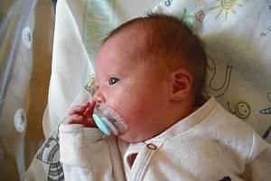 Matyášek Macoun. Narodil se 8. listopadu mamince Jitce Macounové z Turnova. Vážil 3,21 kg a měřil 48 cm.