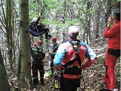 Hasiči pomáhají paraglidistovi ze stromu.