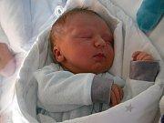Dan Vaníček  Narodil se 19.ledna v jablonecké porodnici  mamince Pavlíně Vaníčkové z Jablonce n.N.  Vážil 4,17 kg a měřil 51 cm.