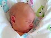 ADÉLKA HALAMOVÁ se narodila v jablonecké porodnici dne 18. 12.2016. Měřila 52 centimetrů a vážila 3830 gramů.