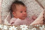 Adrianka Pálichová se narodila Barboře a Tomáši Pálichovým z Jablonce nad Nisou 31. srpna v jablonecké porodnici. Vážila 3,18 kg a měřila 48 cm.