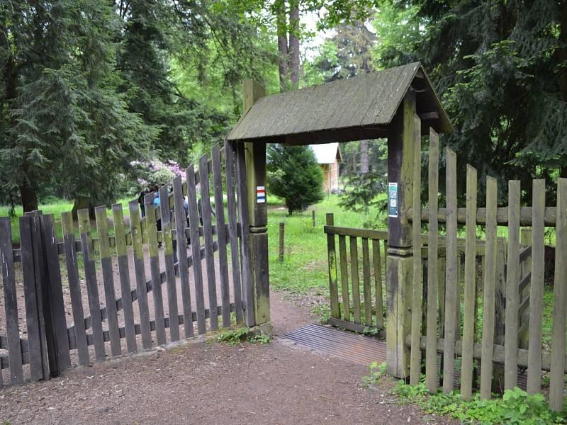 Hruboskalsko - arboretum