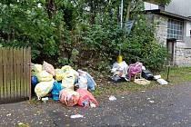Zatímco kontejner uprostřed koryta Nisy je spíše vandalská klukovina, pytle s odpadem, kartony, matrace ale i suť vedle kontejnerů na tříděný odpad, to je černá skládka. Pravidelně u křižovatky ulic Táboritská a Pod Hájem.