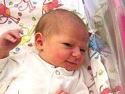 Amalie Štrynclová se narodila Michaele Langerové a Luďkovi Štrynclovi z Bedřichova 3.10.2016. Měřila 49 cm a vážila 3140 g
