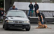 Ukázka psovodů Policie ČR a vězeňské služby
