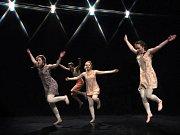 Regionální přehlídka Tanec srdcem přinesla úchvatnou podívanou na výkony tanečníků ve všech kategoriích.