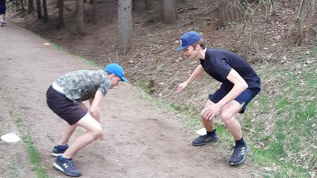 Vlci trénují