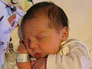 Sanela Ademi se narodila Janě Vlčkové a Hajrudinovi Ademi ze Železného Brodu 1.11.2016. Měřila 47 cm a vážila 3140 g
