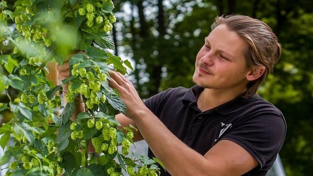 Martin Palouš, sládek pivovaru Volt v Jablonci nad Nisou. Snímek je z 11. září.