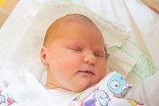 TAMARA PFOHLOVÁ se narodila v neděli 10. září mamince Táně Maťátkové z Liberce. Měřila 51 cm a vážila 3,91 kg.